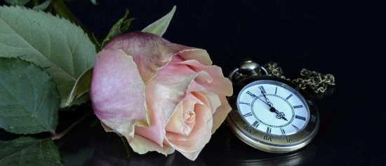 accessory beautiful blossom clock